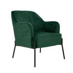 Fauteuil Agustin in groen