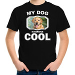 Labrador Retriever s/s